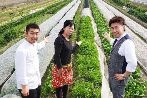 野内畑の野菜